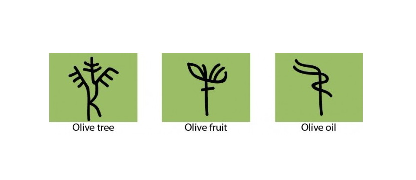 Three Symbols From Olive Oil History Olive Oil Market