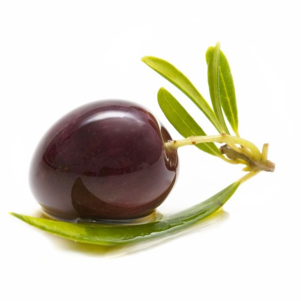 Import/export and production of olive oil in Spain, Italy ...
